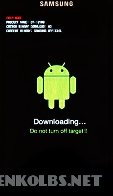 sgs2downloadmodus2
